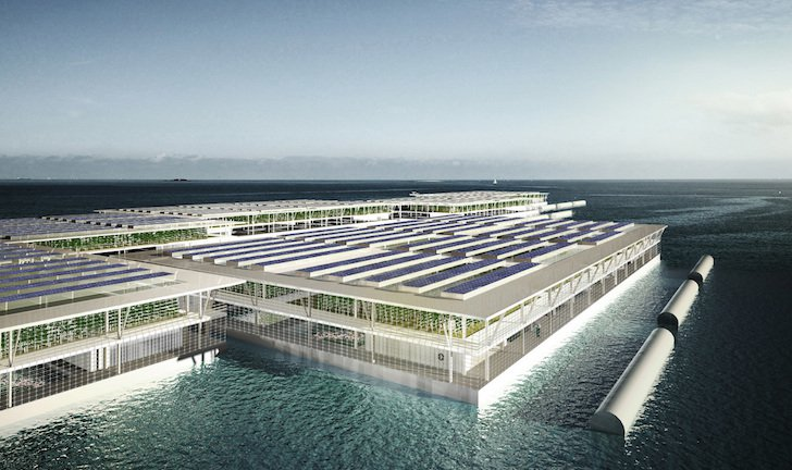 solar floating farms