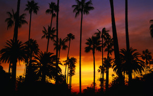 california sunset