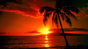 Hawaii-Sunset-solar-news